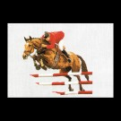 stickpackung paardensport